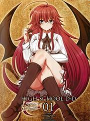 High School D×D